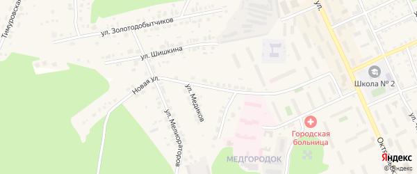 Новая улица на карте Пласта с номерами домов