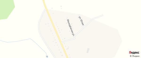 Молодежная улица на карте деревни Аязгулова с номерами домов
