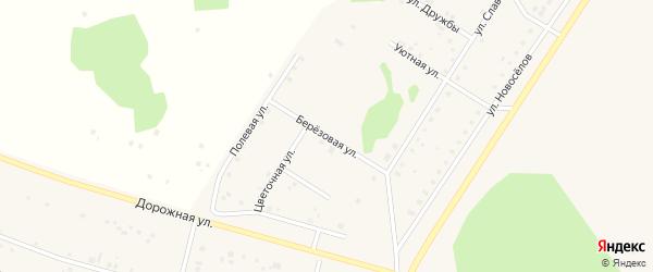 Березовая улица на карте деревни Акбашева с номерами домов