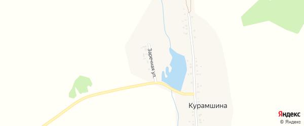 Заречная улица на карте деревни Курамшина с номерами домов
