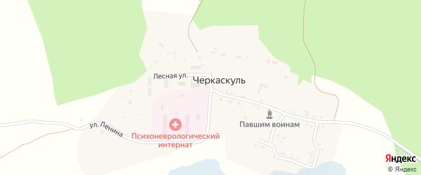 Лесная улица на карте поселка Черкаскуль с номерами домов