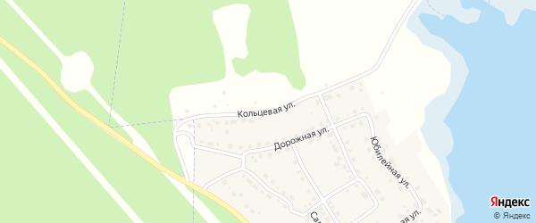 Кольцевая улица на карте села Аргаяша с номерами домов