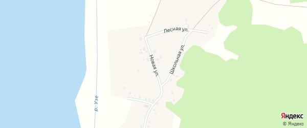 Новая улица на карте деревни Селяева с номерами домов