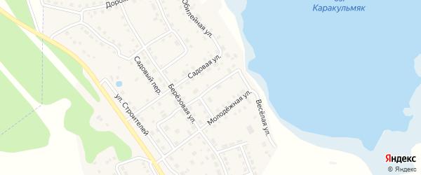 Улица Космонавтов на карте села Аргаяша с номерами домов