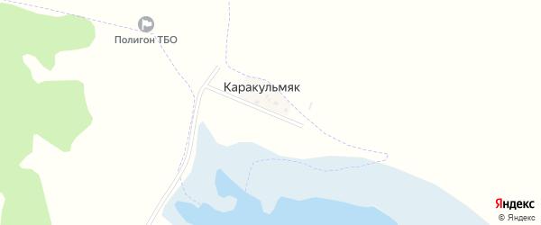 Фермерская улица на карте деревни Каракульмяка с номерами домов