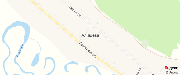 Молодежная улица на карте деревни Алишева с номерами домов