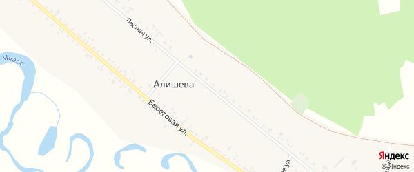 Лесная улица на карте деревни Алишева с номерами домов