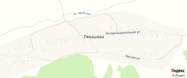 Интернациональная улица на карте деревни Левашева с номерами домов
