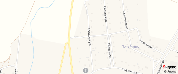 Троицкая улица на карте села Коелга с номерами домов