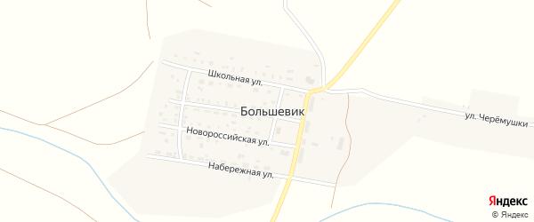 Улица Черемушки на карте поселка Большевика с номерами домов