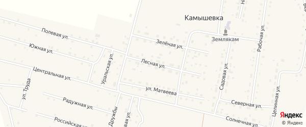 Лесная улица на карте деревни Камышевки с номерами домов