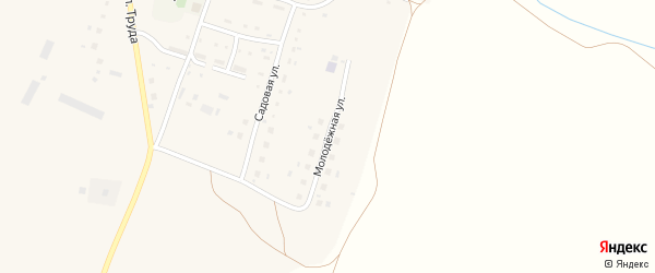 Молодежная улица на карте села Верхней Кабанки с номерами домов