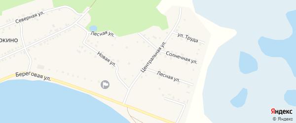 Центральная улица на карте деревни Норкино с номерами домов