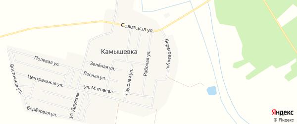 Карта деревни Камышевки в Челябинской области с улицами и номерами домов
