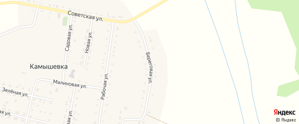 Береговая улица на карте деревни Камышевки с номерами домов