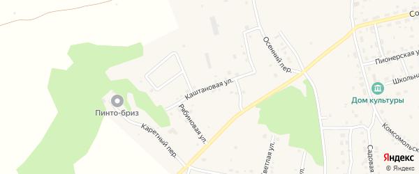Каштановая улица на карте Трубного поселка с номерами домов