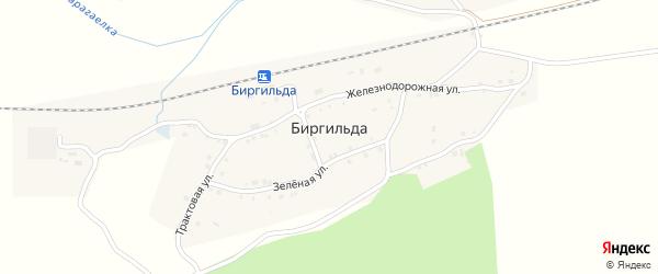 Зеленая улица на карте поселка Биргильды с номерами домов
