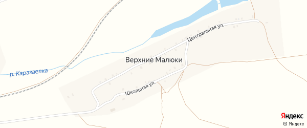 Центральная улица на карте деревни Верхние Малюки с номерами домов