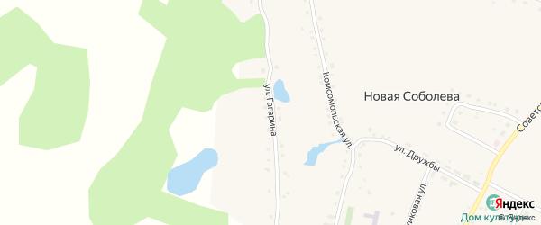 Улица Гагарина на карте деревни Новая Соболева с номерами домов