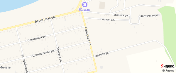 Сельская улица на карте поселка Метлино с номерами домов