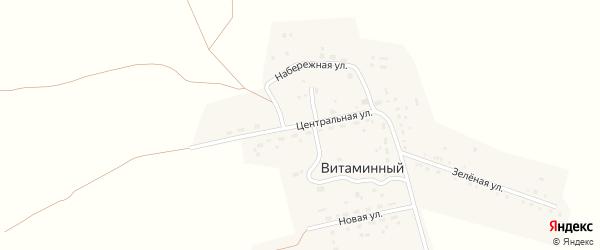 Центральная улица на карте Витаминного поселка с номерами домов