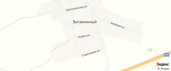 Новая улица на карте Витаминного поселка с номерами домов