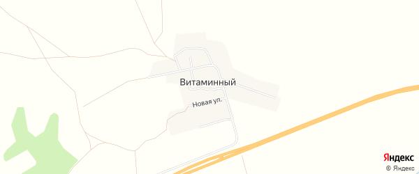 Карта Витаминного поселка в Челябинской области с улицами и номерами домов