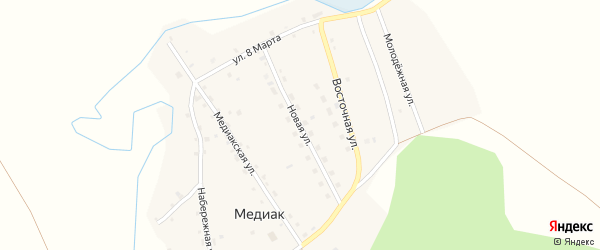 Новая улица на карте деревни Медиака с номерами домов