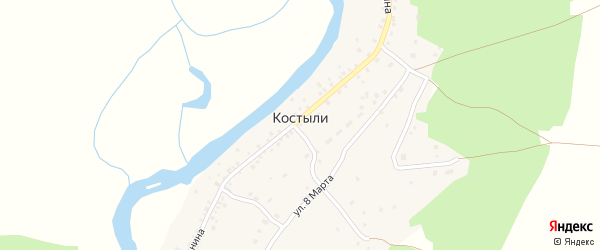 Улица Ленина на карте деревни Костыли с номерами домов