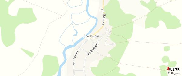 Карта деревни Костыли в Челябинской области с улицами и номерами домов