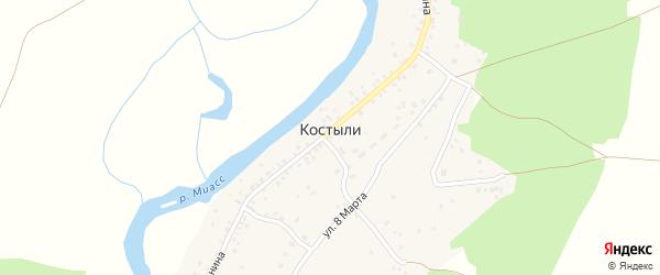 Луговая улица на карте деревни Костыли с номерами домов