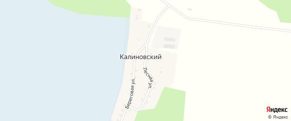 Лесной переулок на карте Калиновского поселка с номерами домов
