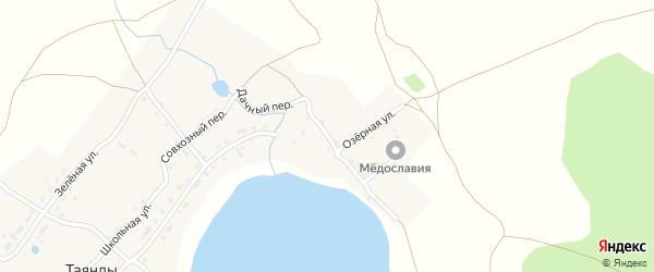 Дачный переулок на карте поселка Таянды с номерами домов
