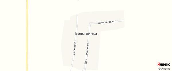 Центральная улица на карте поселка Белоглинки с номерами домов