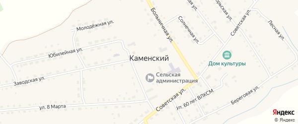 Заводской переулок на карте Каменского поселка с номерами домов