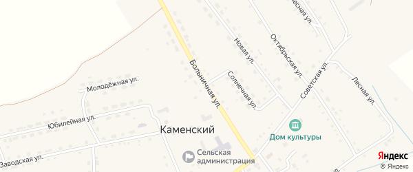 Больничная улица на карте Каменского поселка с номерами домов