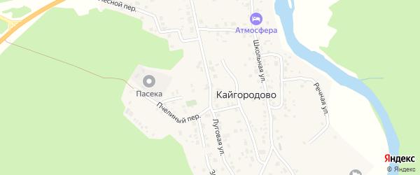 Луговая улица на карте села Кайгородово с номерами домов