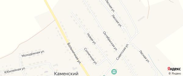 Новая улица на карте Каменского поселка с номерами домов