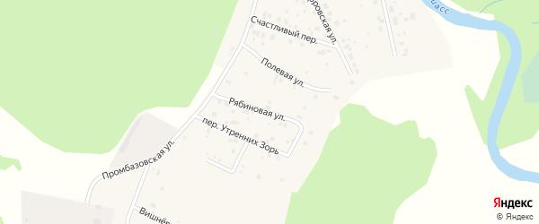Рябиновая улица на карте села Кайгородово с номерами домов