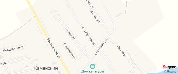 Октябрьская улица на карте Каменского поселка с номерами домов