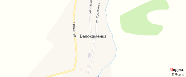 Улица Корсакова на карте поселка Белокаменки с номерами домов