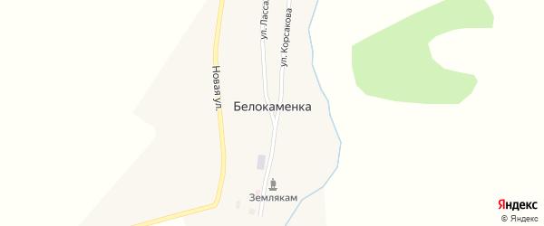 Новая улица на карте поселка Белокаменки с номерами домов