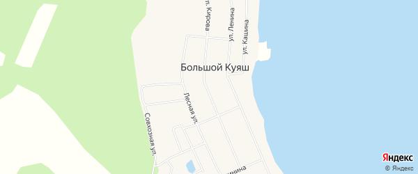 Карта села Большого Куяша в Челябинской области с улицами и номерами домов