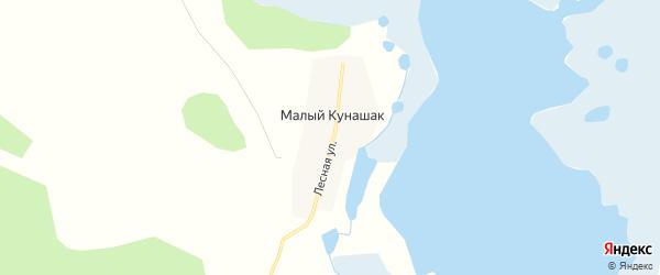Карта деревни Малого Кунашака в Челябинской области с улицами и номерами домов