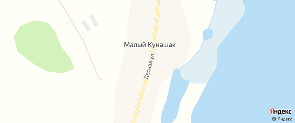 Центральная улица на карте села Кунашака с номерами домов