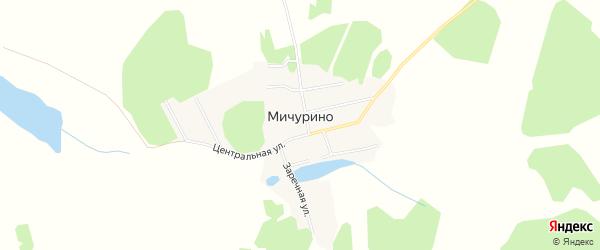 Карта деревни Мичурино в Челябинской области с улицами и номерами домов