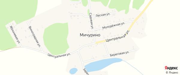 Береговая улица на карте деревни Мичурино с номерами домов