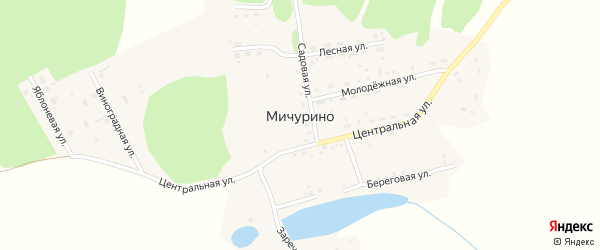 Яблоневая улица на карте деревни Мичурино с номерами домов
