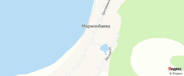 Центральная улица на карте деревни Маржинбаева с номерами домов