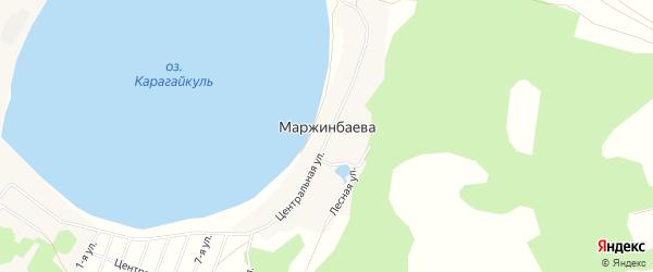 Карта деревни Маржинбаева в Челябинской области с улицами и номерами домов